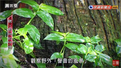 異言堂/寂靜中聽「自然」聲 台灣聲景協會推動聲音教育的故事
