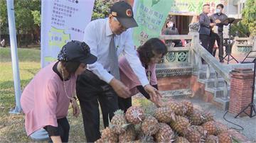 台灣國認購400顆鳳梨 228追思會上大放送 陳柏惟:台灣農產品高品質 中國不懂珍惜