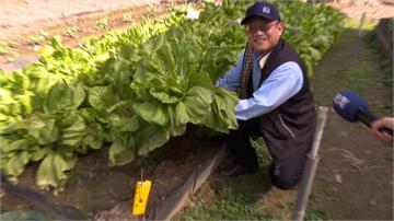 耗費5年「化泥為金」 高師大研發微生物肥料
