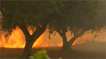 人為縱火?葡萄牙3地接連燒 至少20傷