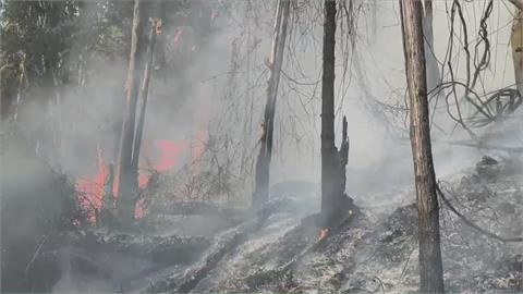南投魚池鄉山林火災 居民驚:像火山爆發嚇人