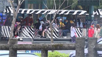 初一走春!台北動物園一度亮人潮燈號 太平山上午即湧入1500多人
