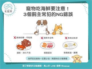 【毛孩飲食】寵物吃海鮮要注意!3個飼主常犯的NG錯誤|寵物愛很大