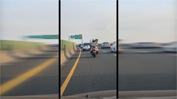 這樣愛狗? 重機騎士載兩隻狗 飆快速道路
