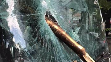 台中路樹接連斷枝 射中BRT、壓傷騎士