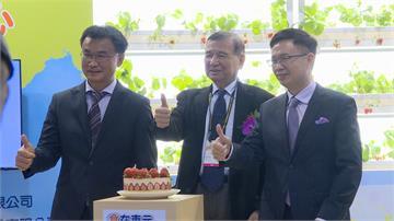 台北國際食品展!智慧農場栽種 展現台灣「食」力