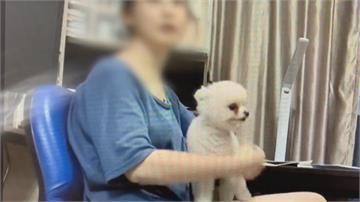 韓女罵警「狗崽子」 警:有看韓劇聽的懂啦!