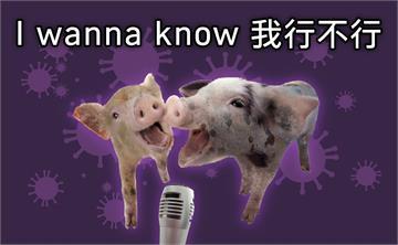 「小豬有病,當然不行」!改編羅志祥名曲 海巡署防疫宣導超酸