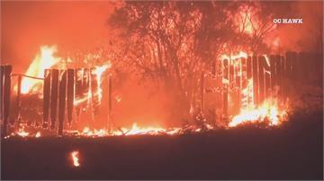 加州野火又竄起 強風加速延燒萬人撤離
