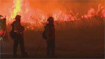 宛如末日!野火「染橘」美西13州加州煙塵籠罩「川普將視察」