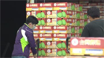 疫情衝擊「鳳梨釋迦外銷少7成」...農委會擬定紓困助農漁民度難關