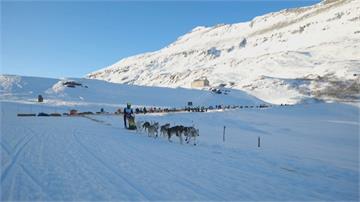雪橇犬阿爾卑斯山上競速!法國好手寫四連霸