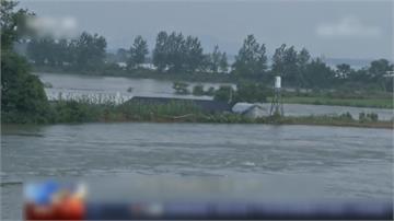 全球/大洪水猛撲魚米之鄉 中國高層喊「糧食安全」?