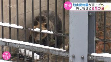 給動物更好的家!北海道旭山動物園門票調漲