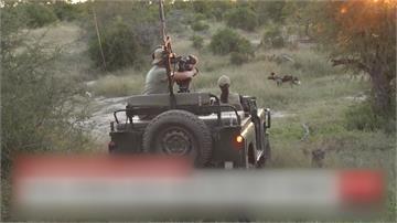 疫情重創觀光!野生動物園推「虛擬獵遊」救業績