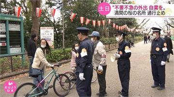 日本增123確診單日新高 東京封閉3賞櫻步道