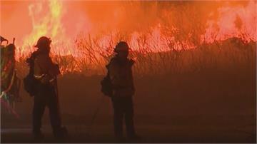 宛如末日!野火「染橘」美西13州 加州煙塵籠罩「川普將視察」