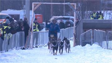 雪橇狗650公里長征 挪威62歲消防隊員奪冠
