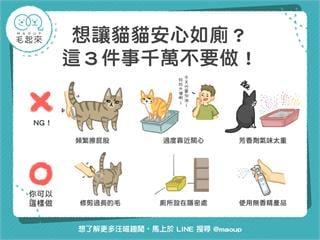 【居家毛學問】想讓貓咪安心如廁?這三件事千萬不要做!