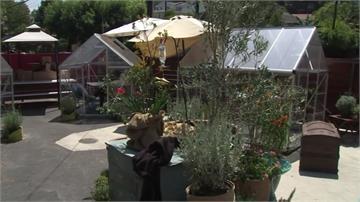 加州禁止餐廳內用餐 當地餐廳推停車場「溫室包廂」