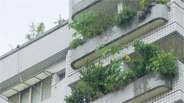 似梅雨天氣「秋潮」雨彈襲台 週一降雨緩和、週六再迎鋒面南下