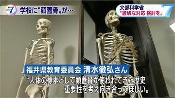 這不是傳說!日本校園人骨模型是真人骨頭