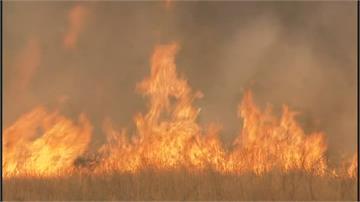 加州野火燒不盡!4.5個台北市燒光光 3.5萬戶停電 災情續擴大