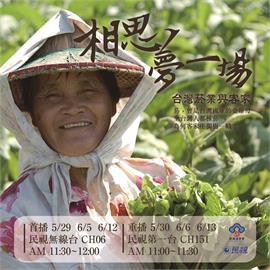 「綠色黃金」!台灣菸業與客家相思夢一場