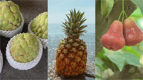 中國今年一口氣禁「鳳梨釋迦蓮霧」3水果輸入 台灣每年恐損40億元!