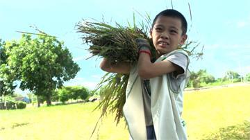 學子從做中學! 食農教育培養友善地球觀念