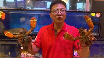 海鮮餐廳大放送!龍蝦半價搶振興券商機