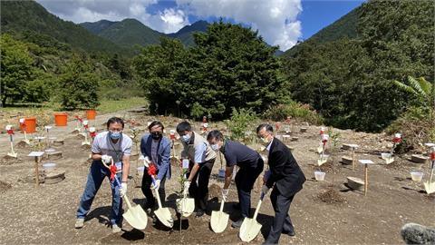 武陵農場「復育回鮭」植樹 打造觀光生態並續文化