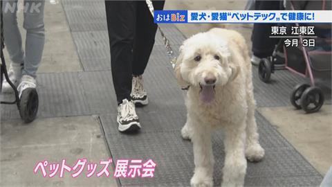 日本寵物商機據無限 企業爭相開發寵物科技產品