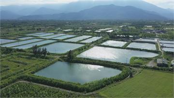 自然生態循環 自製堆肥讓大地永生