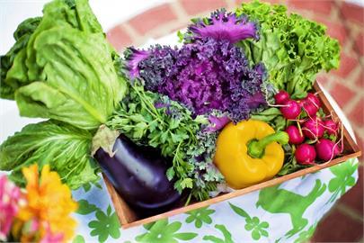 防疫在家想買菜?北農大推這5種蔬果 產量穩定又營養健康