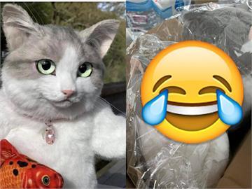 先生你哪位?網購「超真貓咪背包」 開箱秒崩潰:傻眼貓咪