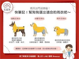 【狗狗出門趣】狗狗雨衣這樣選!雨天出門散步沒煩惱~|寵物愛很大