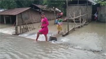印度雨季豪雨成災 東北部最慘 犀牛慘泡水中