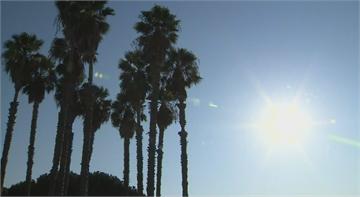 加州勞動節週末熱浪來襲 恐高溫近50度當局憂