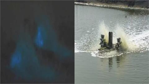 嘉義也有藍眼淚?夜光蟲隨海水進入魚塭 水車底下閃藍色微光 專家:不能輕忽...
