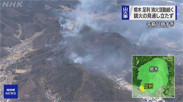 天乾物燥!日本櫪木山林大火延燒 72戶發布避難勸告