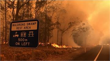 強風助長澳洲野火!死亡人數攀升至少23死