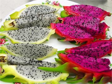 便祕有解!火龍果紅肉、白肉功效各異 營養師:挑對顏色吃