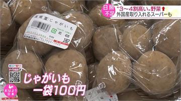 日本降暴雨蔬果價揚 店家哀嚎撐不下去