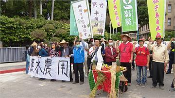 閃電沒解渴!水庫望天興嘆水田停灌 農民急到跳腳抗議