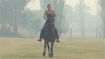 澳洲野火逼近住宅區 婦人騎愛馬衝出火場