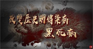 台灣演義/傳染病改變人類史!史上第一場全球疫病 黑死病 2020.03