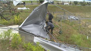 帳篷被吹翻、路樹連根拔起阿妹跨年場地遭強風狂襲