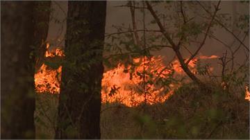 德國柏林森林大火燒3村落 500名村民撤離