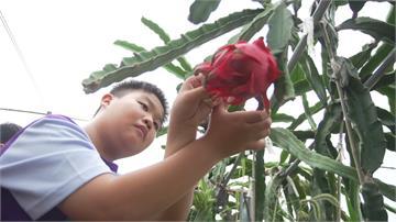 東山國小落實「食農教育」從產地到餐桌認識食安